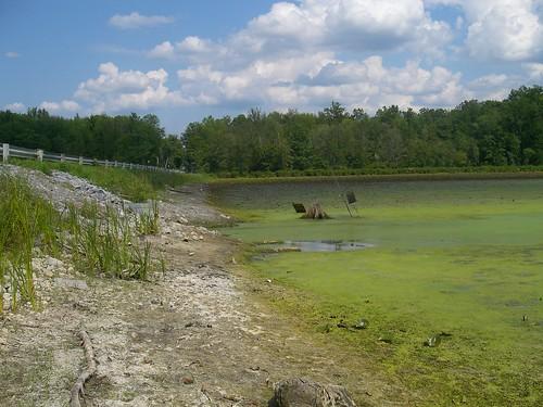 Colonie Reservoir