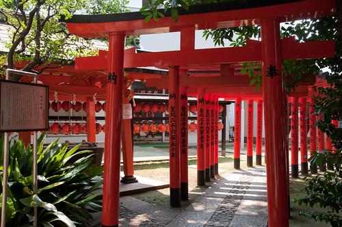 Toyosakai inari Jinja torii