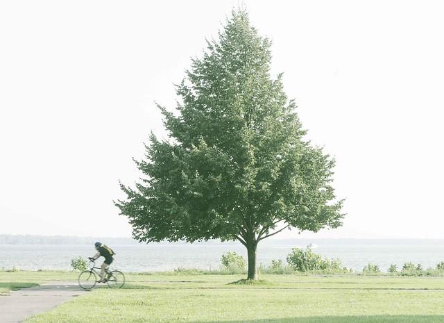 Lachine Biker