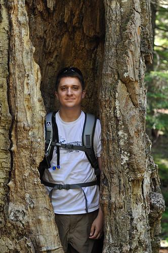Me in a huge tree