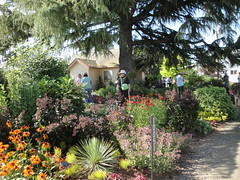 Terra Nova display gardens