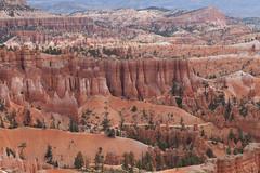 baudchon-baluchon-bryce-canyon-6038170710