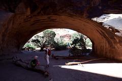 baudchon-baluchon-arches-7795300710