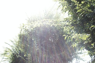 町田樹 画像74