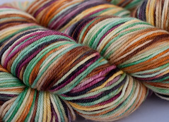 Boaz on Kona Superwash DK, 4 oz (...a time to dye)