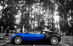 Bugatti Veyron in the rain (Robin Kiewiet) Tags: blue black france cars robin car rain sport vw volkswagen photography rotterdam nikon memorial noir very pierre 4 group engine fast grand automotive super turbo mans le german beast production gt carbon sas bugatti ever sang loud mid supercar maarten fastest automobiles 1939 hartmut ahoy w16 2010 veyron roadster targa tourer kiewiet chiron ettore molsheim d80 hypercar 1001bhp worldcars t35c warkuss 1200bhp