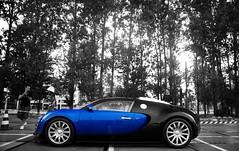 Bugatti Veyron in the rain (Robin Kiewiet) Tags: blue black france cars robin car rain sport vw volkswagen photography rotterdam nikon memorial noir very pierre 4 group engine fast grand automotive super turbo mans le german beast production gt carbon sas bugatti ever sang loud mid supercar maarten fastest automobiles 1939 hartmut ahoy w16 2010 veyron roadster targa tourer kiewiet chiron ettore molsheim d80 hypercar 1001bhp worldcars t35c warkuss 1200bhp