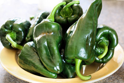 Poblano peppers 9702 R
