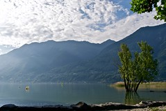Morning light (Eefje74) Tags: morning travel lake mountains nature by night clouds lago switzerland nikon meer europe raw suisse maggiore leafs lagomaggiore zwitserland