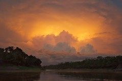 Amazon thunderstorm at sunset (PeterQQ2009) Tags: landscape amazon
