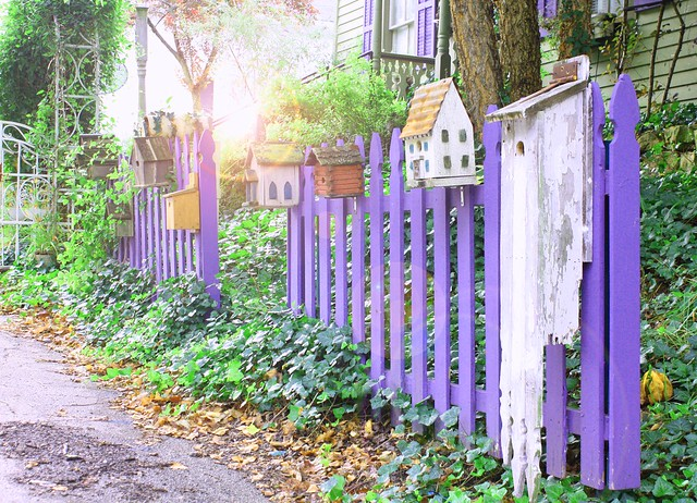 happy purple fence friday