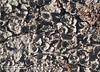 Hojuelas (lorelinx) Tags: salinas erosion suelo sanluispotosi calderas hojuelas