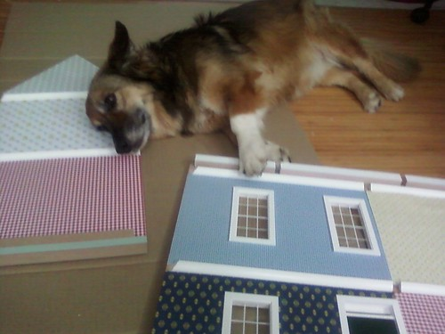 Maggie dog helping with the dollhouse