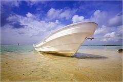 barca (Seracat) Tags: beach canon dominicanrepublic playa caribbean carib plage andrs platja santodomingo marcaribe caribe bocachica repblicadominicana seracat marcarib mygearandmepremium mygearandmebronze bahadeandrs