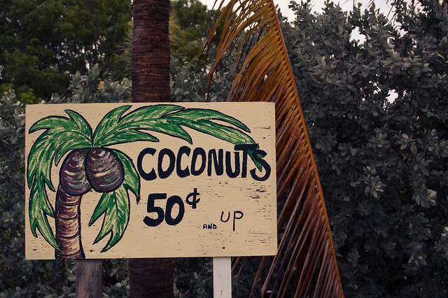 """Coconuts  50¢ and up"""