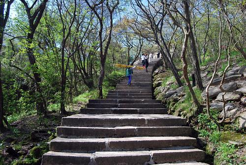 l34 - Stairs up White Goose Ridge