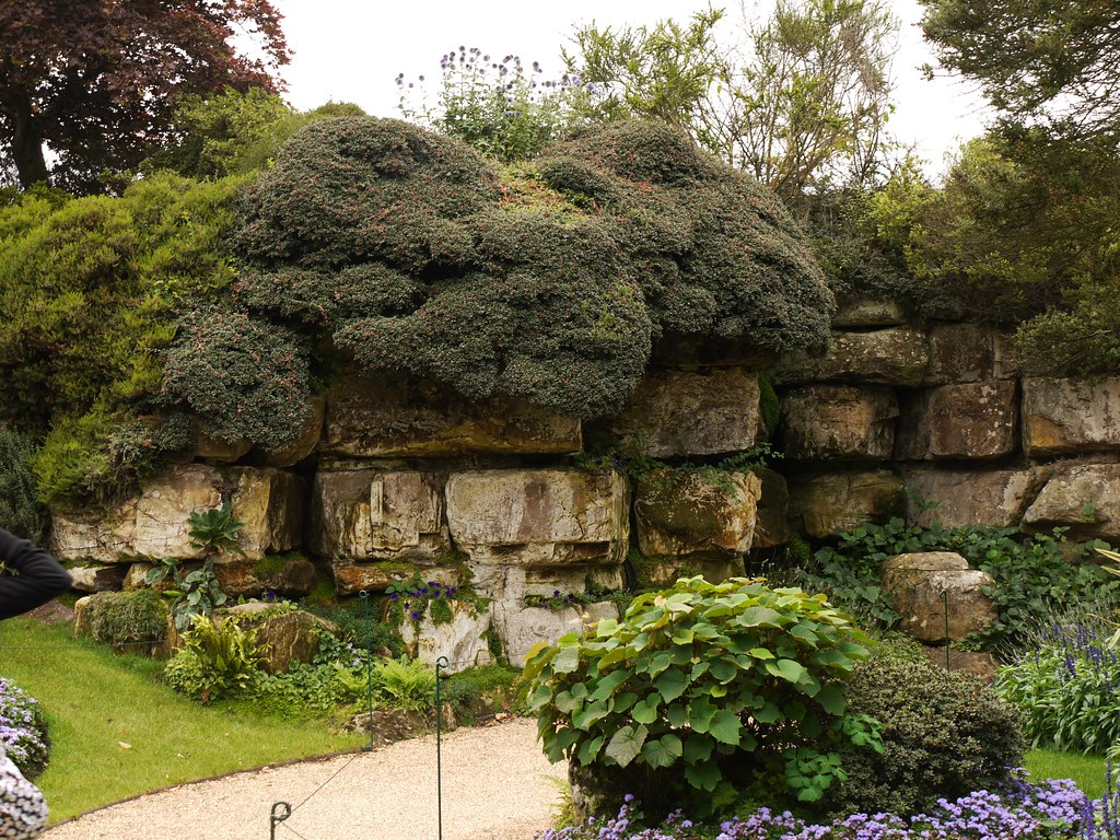 The World\'s Best Photos of hever and topiary - Flickr Hive Mind
