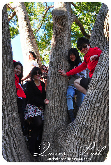 Birthday Barbecue at Queens Park: Climb Tree