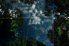 2010:08:16__19:28:45 (MilkaWay) Tags: trees light yard georgia wire doubleexposure athens multipleexposure athome 2010 day228 clarkecounty