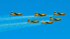 chicago air and water show 2010 hot hot hot!!!!!! (thomassylthe) Tags: coastguard army oracle nikon nikkor blueangels airpower aeroshell aerobatics f15 navyseals coolblue militaryaircraft f17 goldenknights jetfighters goldblue precisionflying fighteraircraft usnavyblueangels d700 telephotos 300mmnikkor tacticalaircraft aircraftimages goldenflight fastaircraft smokinplanes asnavy airmanuevers aewsomeblueangels hotplanes ggggssss precisionteamflying windycityairshow fineflying skilledflyers beachfrontairshow blueangelsoverlakemichigan rapidflight coolangelsblueangelteam blackhawkhellicopter fastblue smokinskys airdomination thunderingplanes