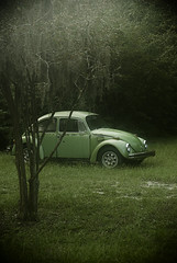 Green Bug (MattGerlachPhotography) Tags: old morning trees green car fog vw bug dark volkswagen rust beetle eerie volt mattgerlachphotography
