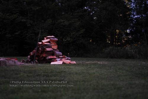 Waiting Woodpile