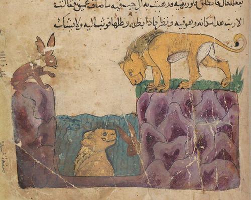 numskull and the rabbit summary