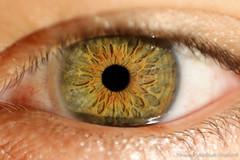 Eu (Rmspunk) Tags: bw radio ojo oscar eyes retrato cara ocio rostro locutor rmspunk azacon