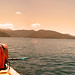 Kayaking in the Marlborough Sounds