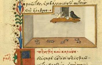 Columba et Corvus