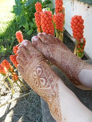 moroccan feet and orange weird lilly thingies (hilarys_henna) Tags: hilary mendocino henna bodyart mehndi willits