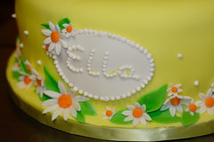 Ella's Cake 20100006