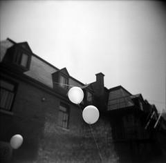 (hwtstudio) Tags: canada 120 6x6 glass mediumformat balloons square lens blackwhite holga quebec montreal plastic ilforddelta400 noirblanc placesthenri 120gn