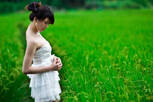 [フリー画像] 人物, 女性, アジア女性, 田畑・農場, 稲・イネ, ドレス, 201008291500