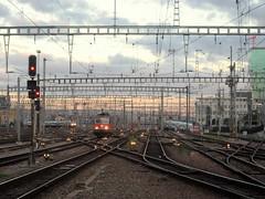 Gare Centrale - Main Station, Zurich (blafond) Tags: swiss zurich tracks rail bahnhof hauptbahnhof points locomotive hbf morgen matin schiene mornin aiguillages suisee voiesferrees