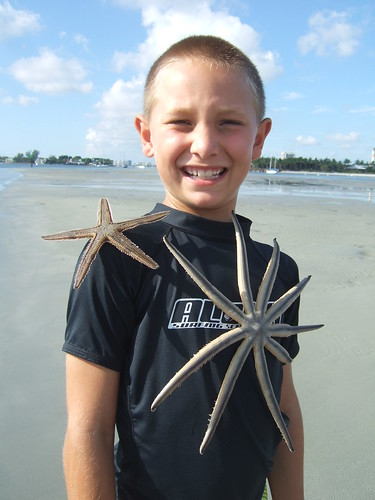 Hagan and starfish