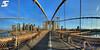Brooklyn bridge (A.G. Photographe) Tags: new york city nyc usa ny newyork france brooklyn america skyscraper us nikon manhattan unitedstatesofamerica cable rope brooklynbridge manhattanbridge eastriver nikkor amerika français hdr lowermanhattan anto américain xiii amérique 16mmfisheye d700 antoxiii hdr7raw