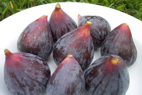 Black Mission Figs (hand-picked)