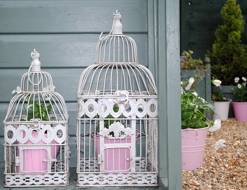 My garden bird cages