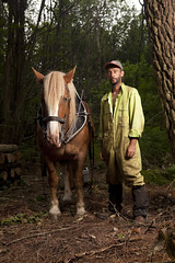 Franck & Ondine (Vende Grandeur Nature) Tags: wood horses horse forest ball cheval mare chainsaw riding cutting related coupe lumberjack fort bois breton chevaux ondine bille bucheron trait jument skidding questre dbardage trononneuse