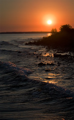 [フリー画像] 自然・風景, 海, 夕日・夕焼け・日没, 波, アメリカ合衆国, 201102081900