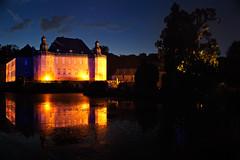 Schloss Dyck bei Nacht (Alexander Spanke) Tags: tree night nikon nacht schloss lightshow baum langzeitbelichtung schlossdyck illumina d700