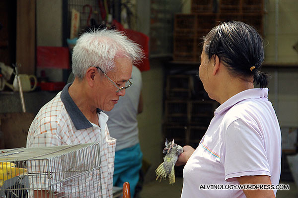 Uncle inspecting a bird he is about to buy