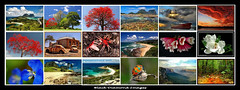 Collage - Black Diamond Images (Black Diamond Images) Tags: collage interesting best blackdiamondimages photosmost picsbest imagesbest