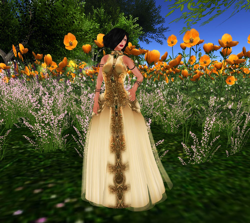 emotions gold dress 1