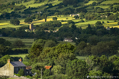 Brecon Beacons 02 (Andi Rusyn) Tags: colourlandscapephotography brecon beacons wales hills fields nature summer sunnyday green blue sheep trees bushes shrubs