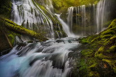'Shoot-n-Swipe' Panther Creek Falls (Gavin Hardcastle - Fototripper) Tags: panther creek falls columbiarivergorge spring deluge rain river waterfall water moss wet slippery washington green gavinhardcastle fototripper