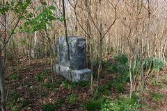 Jones Cemetery (Midnight Believer) Tags: jonescemetery graveyard headstones tombstones gravestones overgrown abandoned death livingstoncounty kentucky rural remote
