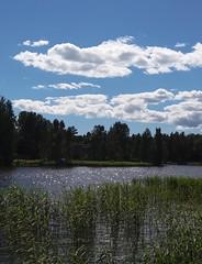 Summer day (Valencianista84) Tags: summer verano kesä helsinki helsingfors suomi finland finlandia sea mar mare hav