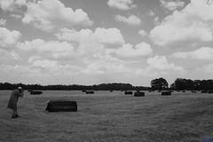 IMG_0361 (bandashing) Tags: trees summer england field grass clouds square manchester day photographer cut farm photograph breeze bale sylhet bangladesh rectangles bandashing mullishab